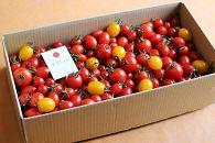 ドロップファームの美容トマト3kg箱