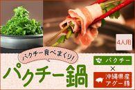 <品切れ>★パクチー鍋セット★高級アグー豚しゃぶしゃぶ800g&パクチー1kg!(4人用)