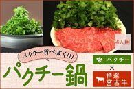 <品切れ>★パクチー鍋セット★高級宮古牛しゃぶしゃぶ800g&パクチー1kg!(4人用)