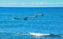 【春うに】蝦夷バフンウニ塩水パック100g×2P【2021年5月中旬頃より発送】