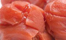 紀州南高梅 《つぶれ梅セット》 しそ漬け梅 塩分8%(1.2キロ)【白浜グルメ市場】