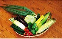 ★先行予約★【ニセコ】旬の野菜詰合せ 2020年発送