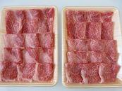【2ヶ月定期便】A5等級飛騨牛赤身肉焼き肉用1kgモモ又はカタ肉