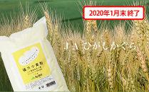 ★受付終了★パンや餃子にもおススメ!もちもち触感がやみつきに『キタノカオリ小麦粉』1kg×12袋