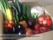 季節の旬の京野菜・こしひかり・地たまごの詰め合わせセット