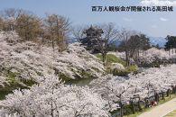 新潟県るるぶトラベルプランに使えるふるさと納税宿泊クーポン3,000円分