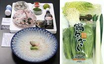 FI17-57【着指定可】本場関門とらふぐ刺身・鍋・野菜セット(4~5人前)