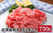 【ポイント交換専用】YM12佐賀産和牛切り落とし750g(750g×1P)