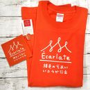 EcarlateオリジナルTシャツ(オレンジ・Mサイズ)、ステッカー、ピンバッチセット