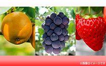 フルーツの町竜王町!旬の果物が楽しめるフルーツ頒布会A3種(2020年)