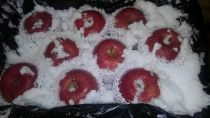 青森の雪とりんご