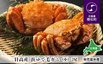 日高産浜ゆで毛ガニ(小)2尾