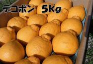 ■和歌山有田産!デコポン秀品のみ!約5kg【2020年12月下旬以降発送】
