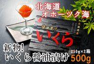 【数量限定】新物!いくら醤油漬500g(網走加工)