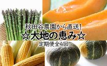 秋田谷農園から直送!☆大地の恵み☆定期便《全4回》