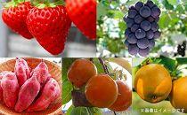 【果樹狩り】フルーツの町竜王町!フルーツ年間パスポートB5種(2021年)
