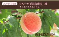 【先行予約】2020年8月発送!!フルーツ王国余市産「桃」 12玉~18玉3kg【山本観光果樹園】