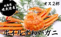 【北海道・噴火湾産】ボイル・ずわいガニ(オス2~3杯)