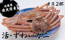 【北海道・噴火湾産】活・ずわいガニ(オス2~3杯)