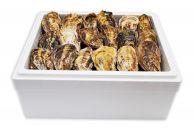 【ギフト用】[殻付き牡蠣]Lサイズ(大)50個《加熱用》