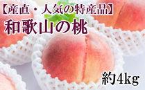 2020年6月下旬以降発送【産直・人気の特産品】和歌山の桃 約4kg・秀選品