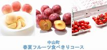 【2020年度産先行受付】中山町産 春夏フルーツ食べきりコース