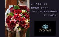 BM187ロータスガーデンの豪華絢爛とれたて「たっぷりの山形県酒田市のダリアの花束」
