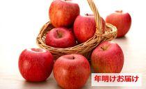 【年明け】サンふじ54~60個青森県五所川原市産