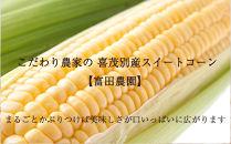 2020年分予約開始‼こだわり農家の喜茂別産スイートコーン【富田農園】