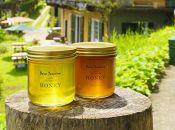 農園セレクト「ながさき樹々の花ハチミツ」400g瓶 2本セット