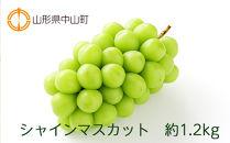 【2020年度産先行受付】シャインマスカット 約1.2kg