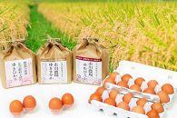 【定期便3回】あさひかわ米3種と卵の食べ比べ