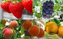 フルーツの町竜王町!旬の果物が楽しめるフルーツ頒布会B5種(2020年)