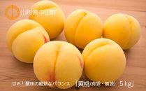 【2020年度産先行受付】甘みと酸味の絶妙なバランス「黄桃(有袋・無袋) 5kg」