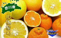 旬の柑橘勢揃い!坂出産の柑橘詰め合わせセット