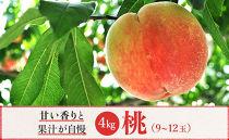 ★2020年7月~8月発送★【特選】<甘い香りと果汁が自慢>桃4kg(9~12玉)