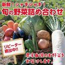 新鮮!シャキシャキ!旬の野菜詰め合わせ(1回発送)