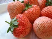 いちご苺「桃薫」~桃の香り&食感~8パック