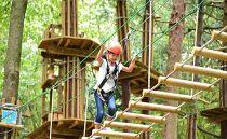 【3名様分】森の空中散歩!フォレストアドベンチャー・おおひら 体験チケット(初級コース)