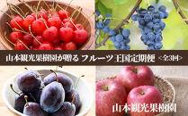 【山本果樹園が贈るフルーツ王国定期便!】旬のフルーツ3回発送コース