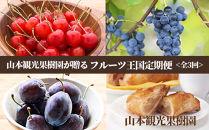 【山本果樹園が贈るフルーツ王国定期便】豪華!!旬のフルーツ3回発送コース