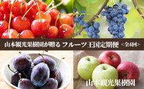 【山本果樹園が贈るフルーツ王国定期便!】旬のフルーツ満足の4回発送コース