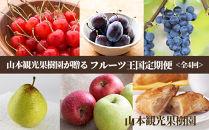 【山本果樹園が贈るフルーツ王国定期便!】豪華!!旬のフルーツ4回発送コース