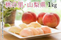 【限定1000箱 先行予約】日本一の桃の里・山梨県産完熟桃約1Kg(2~5玉)