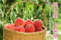 【限定1000箱 先行予約】日本一の桃の里・山梨県産完熟桃約2Kg(4~7玉)