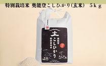 特別栽培米奥能登こしひかり(玄米)5kg
