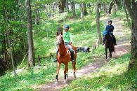 八王子乗馬倶楽部 本格レッスン3か月コース(自然公園内での外乗付)