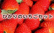 【50セット限定】いちごセット