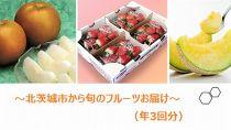 【先行受付】旬のフルーツ便(年3回)お届けするのは「いちご」「メロン」「梨」