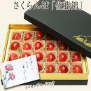♪先行予約♪母の日♪山形さくらんぼ佐藤錦L24粒チョコ箱メッセージ BP026